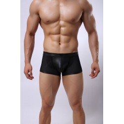 Faux Leather Trunks by WangJiang